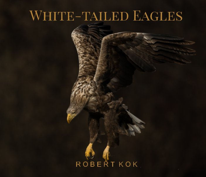 View White-tailed Eagles by Robert Kok