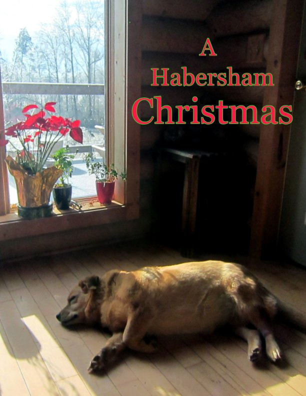 View A Habersham Christmas by Creative Habersham