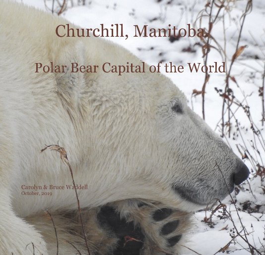 View Churchill, Manitoba Polar Bear Capital of the World by Carolyn and Bruce Waddell