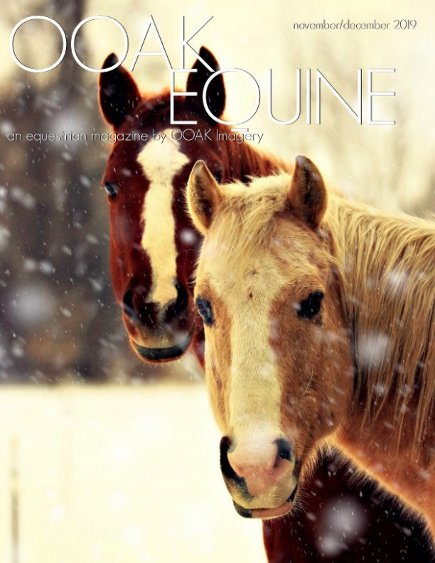 Ver OOAK EQUINE November/December 2019 Issue por Rae Lombino, Robin Lombino