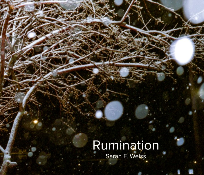 View Rumination by Sarah F. Weiss