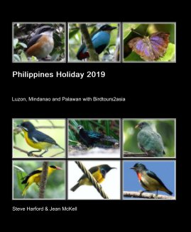Philippines Holiday 2019 book cover