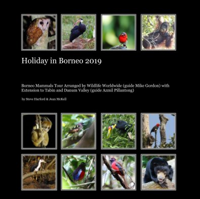 Holiday in Borneo 2019 book cover