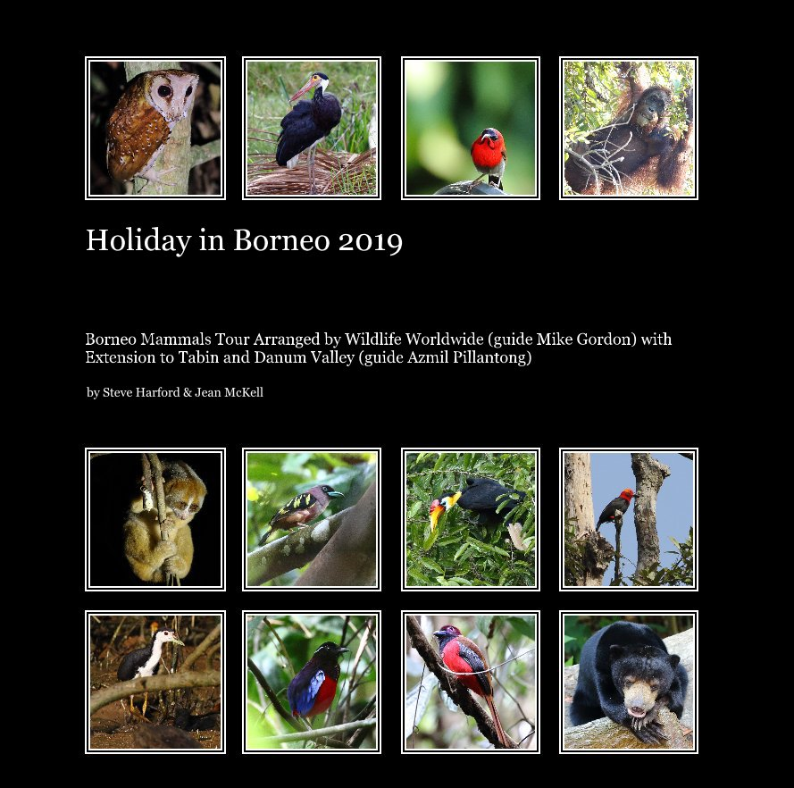 View Holiday in Borneo 2019 by Steve Harford and Jean McKell