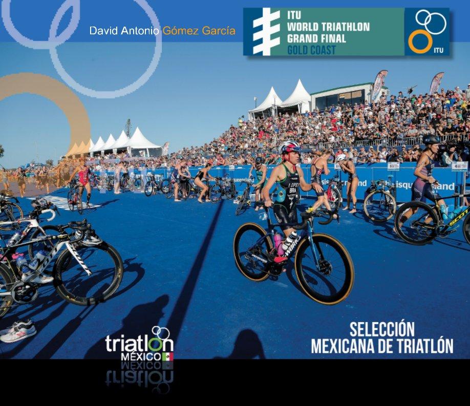 View David Gomez VI ITU Triathlon Grand FINAL GOLD COAST 2018 by FMTRI