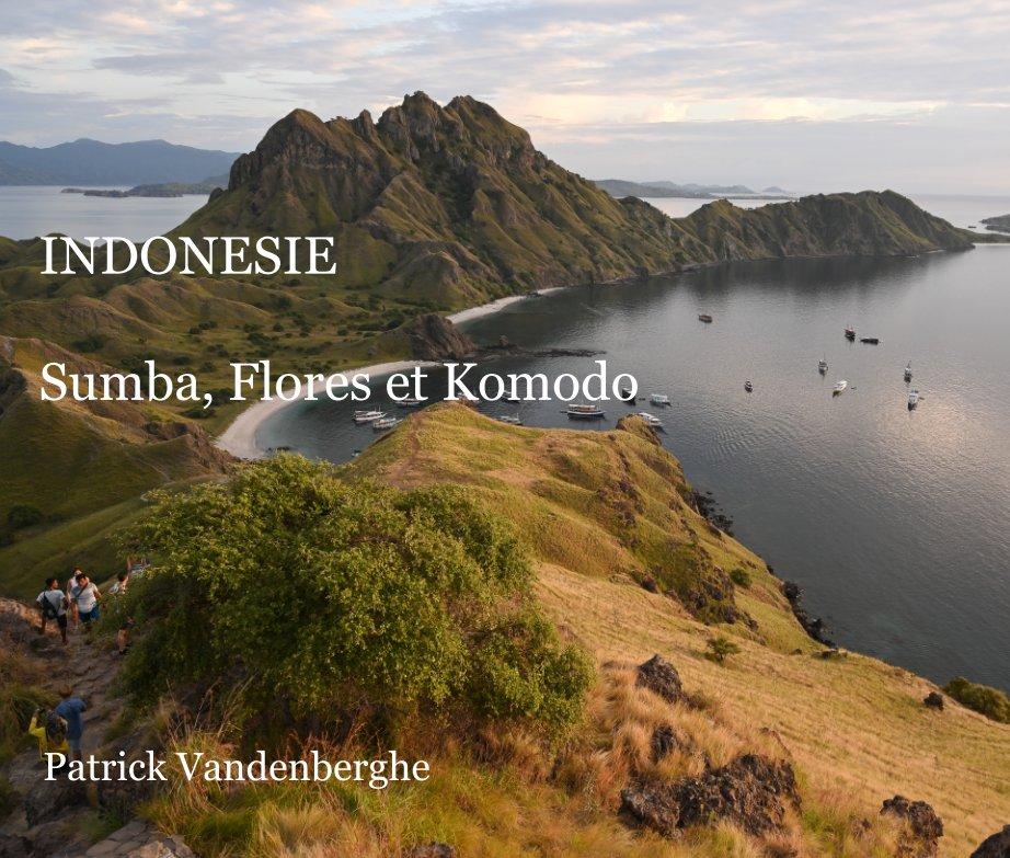 View Indonésie by Patrick Vandenberghe