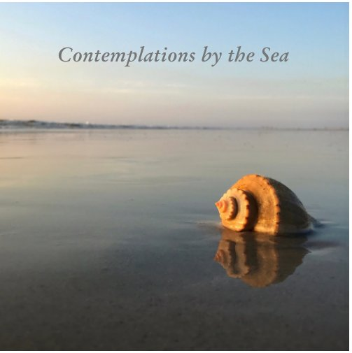 View Contemplations by the Sea by Kim Ramsey