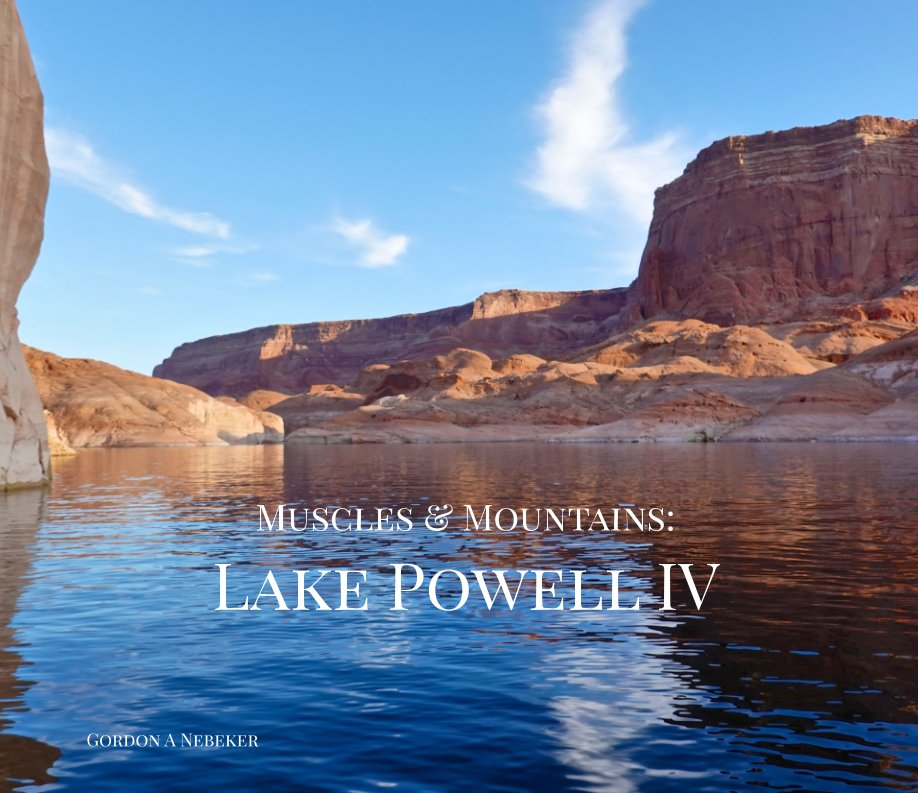 View Muscles and Mountains: Lake Powell IV by Gordon A Nebeker