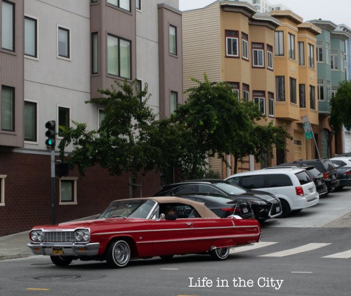 View Life in the City by Cassidy Block