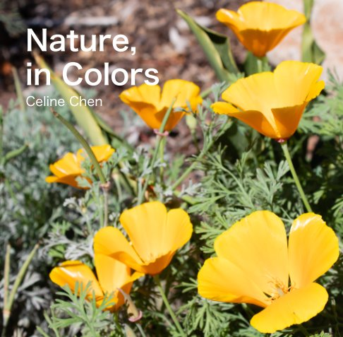 View Nature, in Colors by Celine Chen
