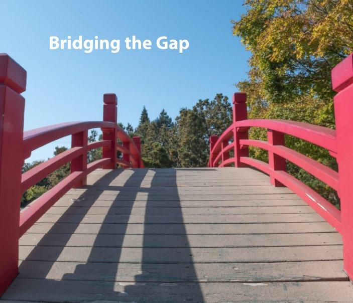 View Bridging the Gap by Aya Kanan