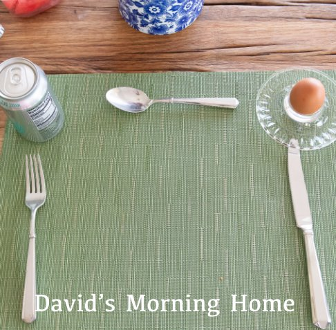 View David's Morning Home by David Elfrink