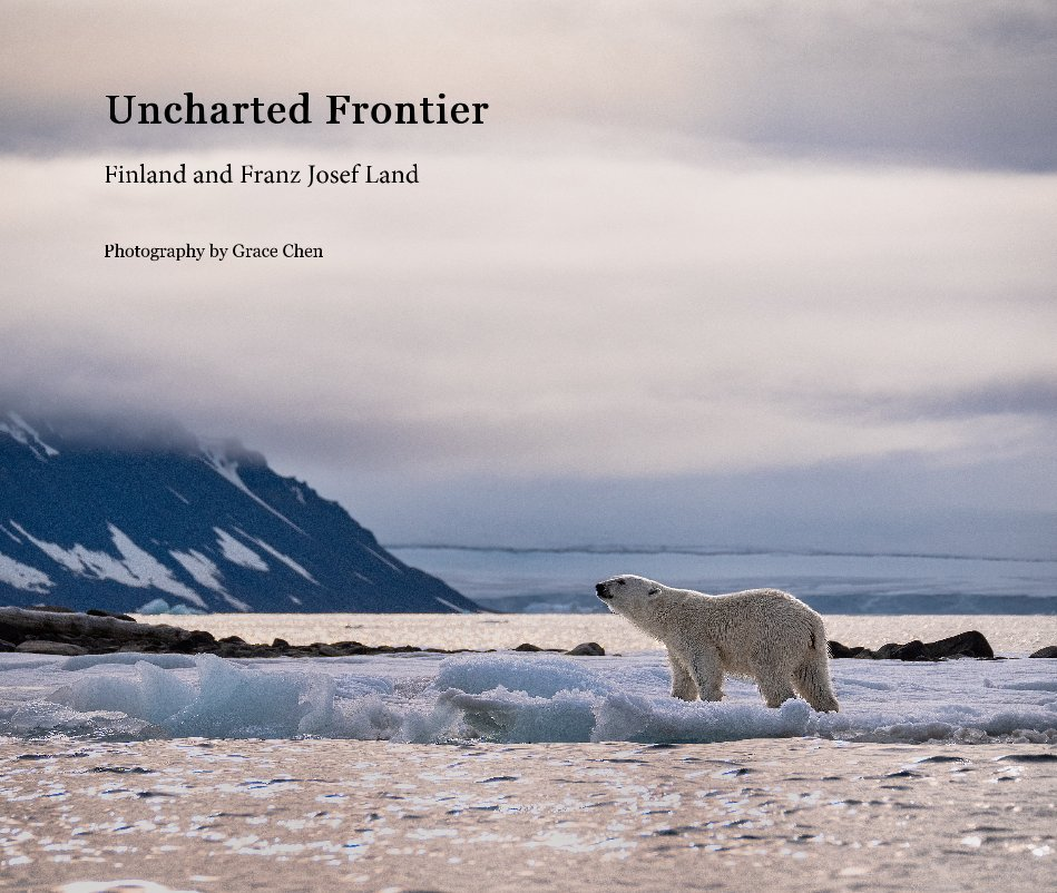 View Uncharted Frontier by Grace Chen