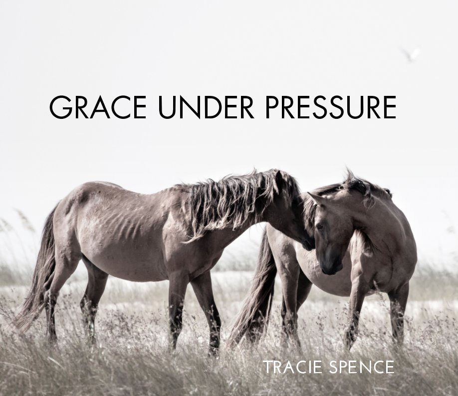 View Grace Under Pressure - The Spanish Wild Mustang by Tracie Spence