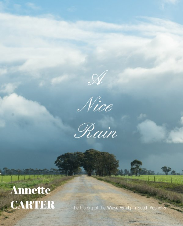 View A Nice Rain by Annette Carter