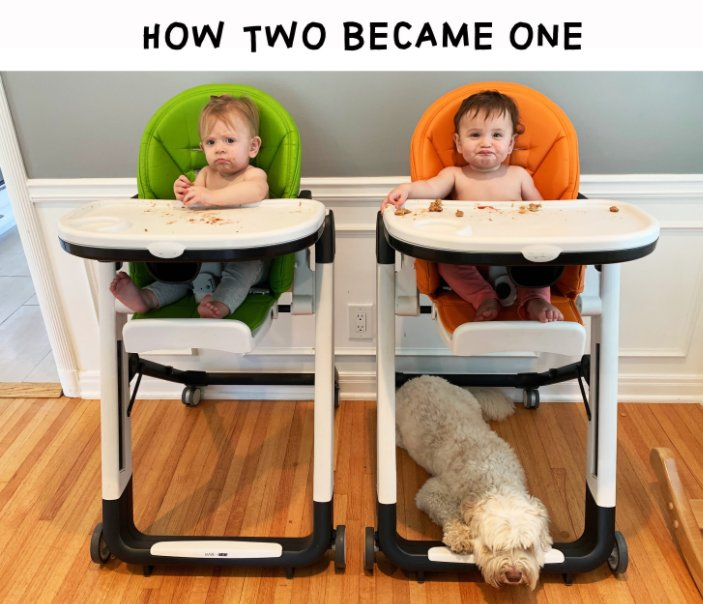 View How Two Became One by Laurie Haines