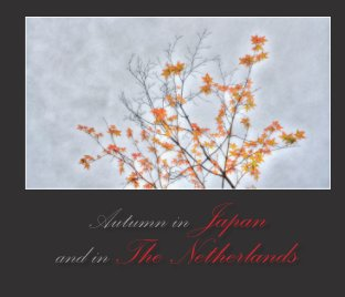 Autumn in Japan and in the Netherlands book cover