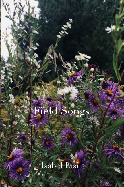 View Field Songs by Isabel Pasila