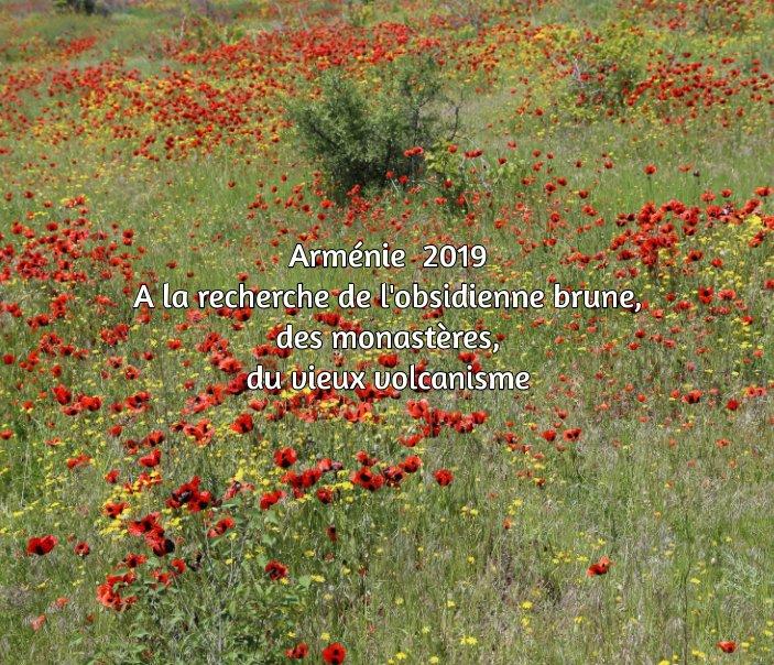 View Arménie by Jean Michel Mestdagh