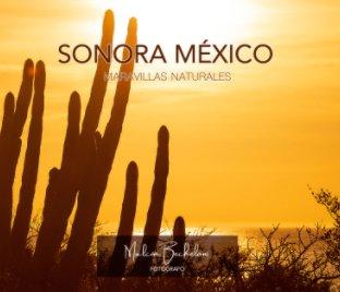 Sonora México book cover