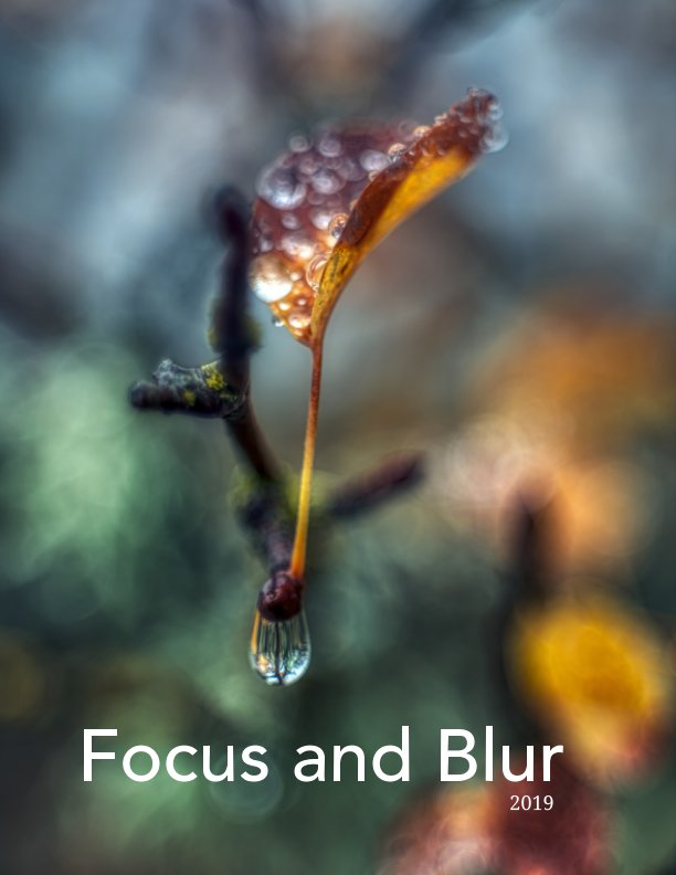 View Focus and Blur by Richard R. Powell