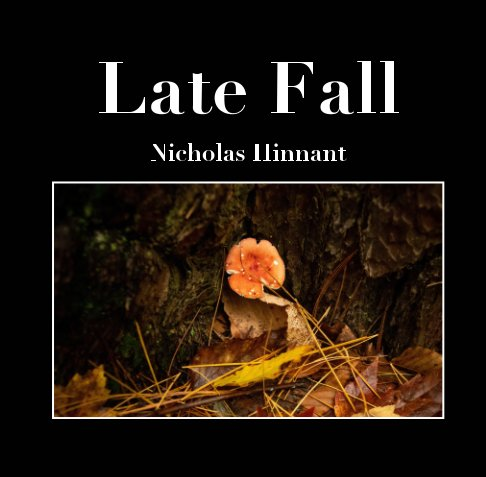 View Late Fall by Nicholas Hinnant