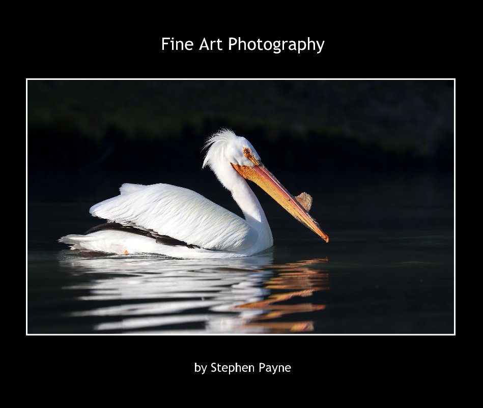 View Fine Art Photography 2019 by Stephen Payne