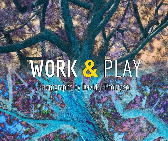 View Work and Play by David J. Thompson