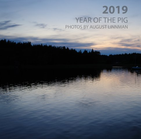 View 2019 - Year of the Pig by August Linnman