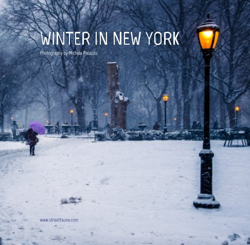 View Winter in New York by Michele Palazzo
