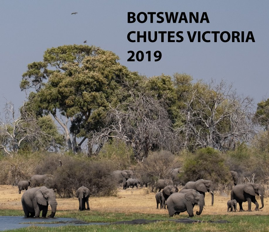 Visualizza Botswana di Jean Hamburger