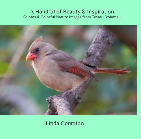 View A Handful of Beauty and Inspiration - Quotes and Colorful Nature Images from Texas Volume I by Linda Compton