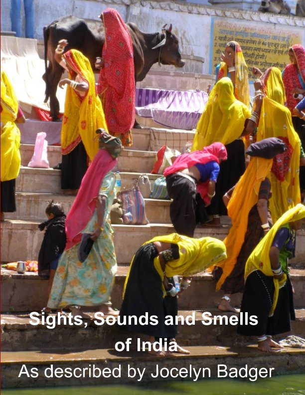 View Sights, Sounds and Smells of India by Jocelyn Badger