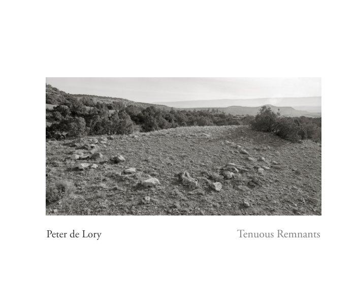 View Tenuous Remnants by Peter de Lory