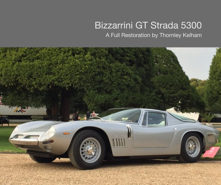 View Bizzarrini GT Strada 5300 by Vittoria Thornley