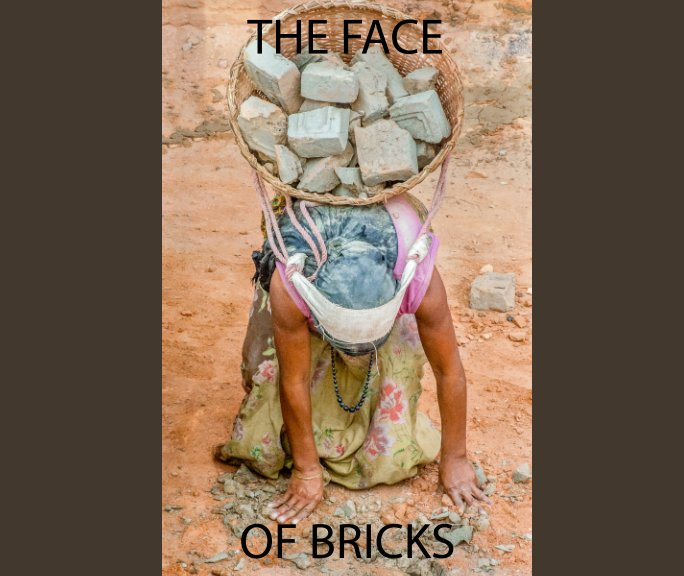 View The Face Of Bricks by Jim Spillane