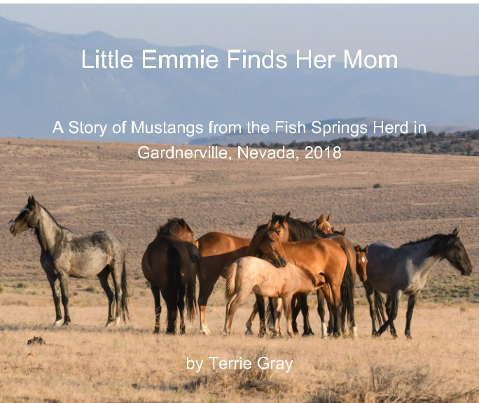 View Little Emmie Finds Her Mom by Terrie Gray