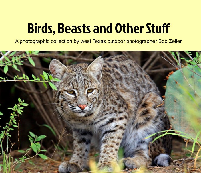 View Birds, Beasts and Other STuff by Bob Zeller