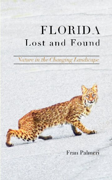View Florida Lost and Found by Fran Palmeri