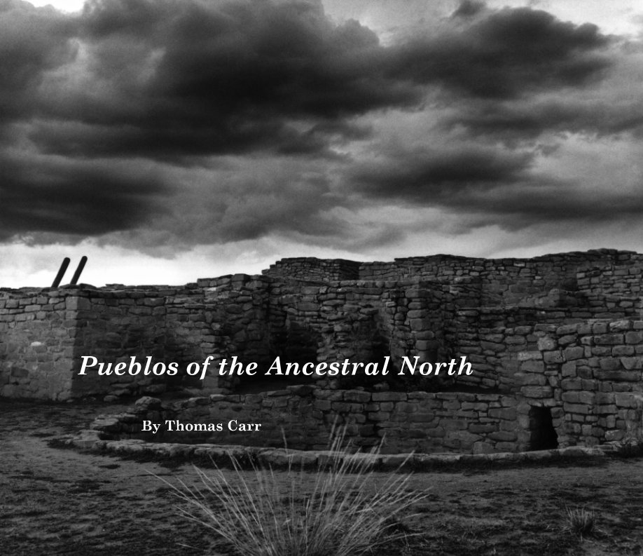 View Pueblos of the Ancestral North by Thomas Carr
