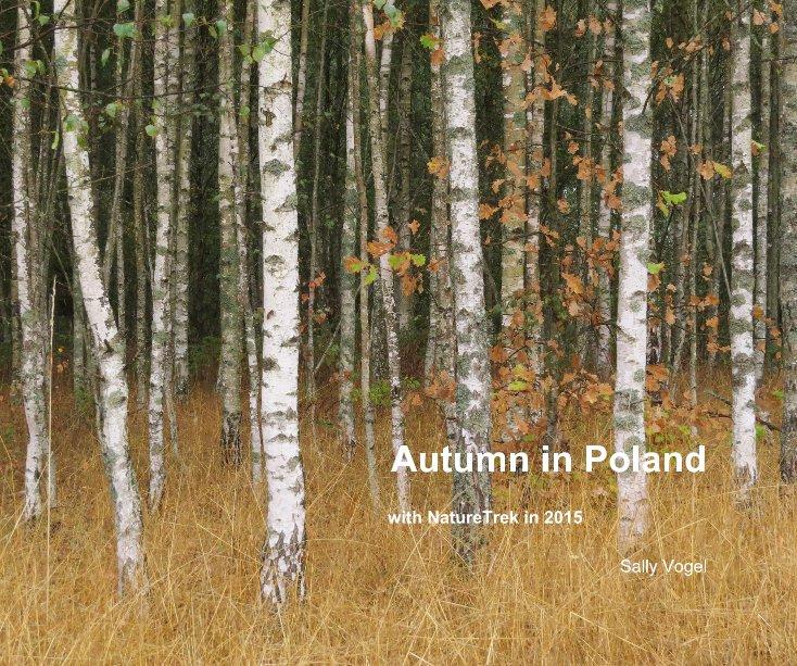 View Autumn in Poland by Sally Vogel