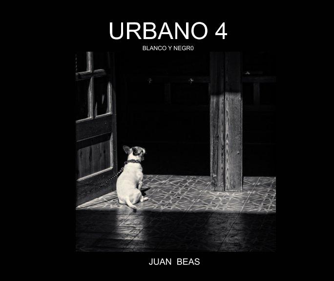 View Urbano 4 by JUAN BEAS