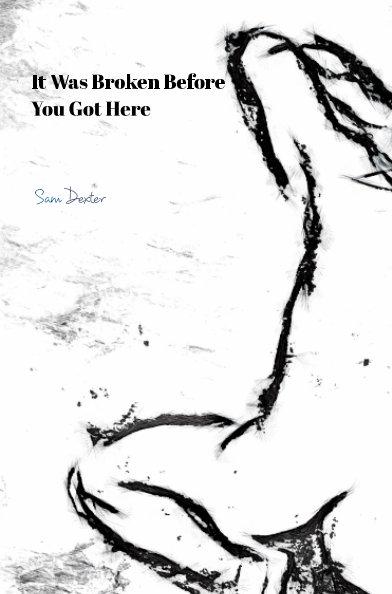 View It Was Broken Before You Got Here by Samuel Dexter