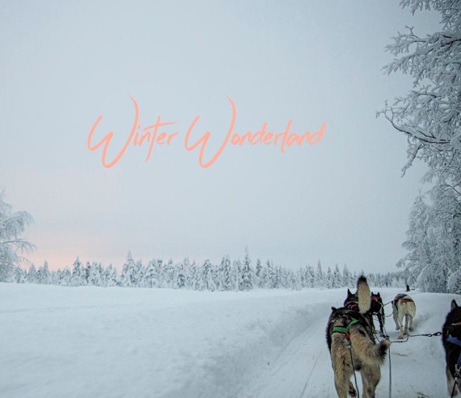 View Winter Wonderland by Marylou Badeaux