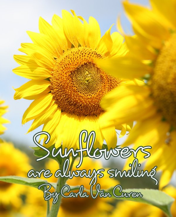 View Sunflowers are always smiling by Carla VanCuren