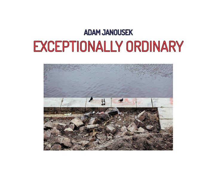 View Exceptionally Ordinary by Adam Janoušek