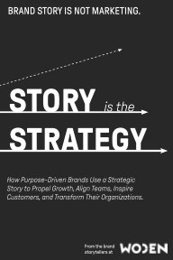 Story is the Strategy book cover