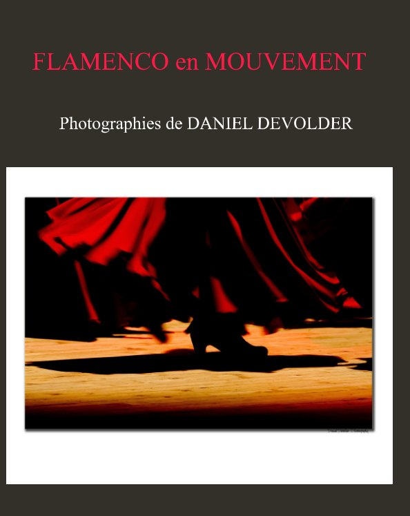 View flamenco en mouvement by daniel devolder