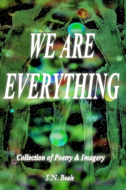 View We Are Everything by S.N Beale