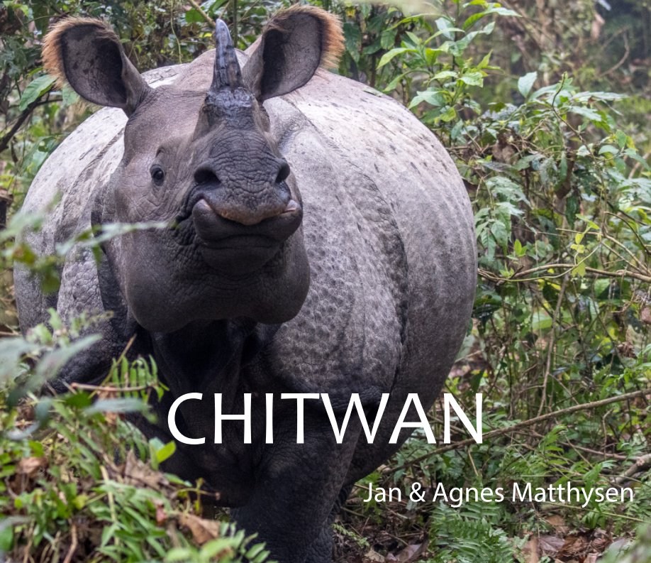 View Chitwan by Matthysen